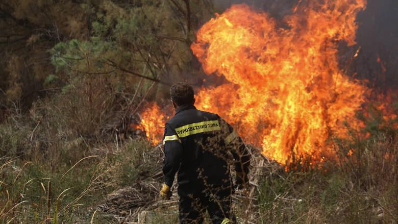 Φωτιά στην Ανατολική Μάνη – Εισηγήσεις για εκκένωση του οικισμού Καλύβια