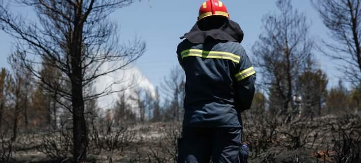 Εγκαίνια Πυροσβεστικού Κλιμακίου στην Κοινότητα Προαστίου