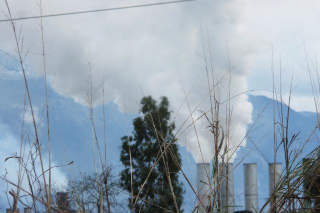Σύσκεψη στην Π.Ε. Μεσσηνίας για τη λειτουργία  των πυρηνελαιουργείων