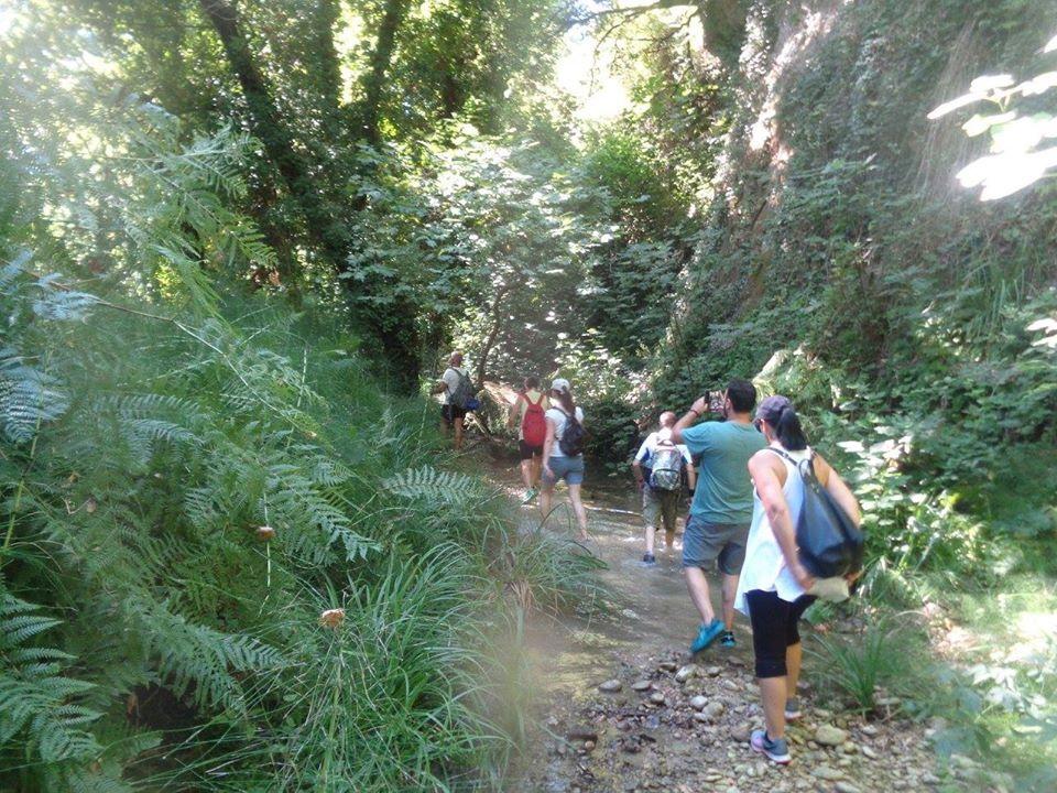 Eυκλής Καλαμάτας: Εξερεύνηση  στο Φαράγγι Κάκοβος στην Ηλεία