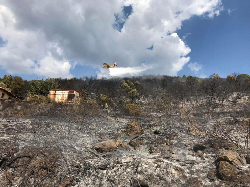 Υπό μερικό έλεγχο η φωτιά στο Χανδρινού Πυλίας (φωτογραφίες)