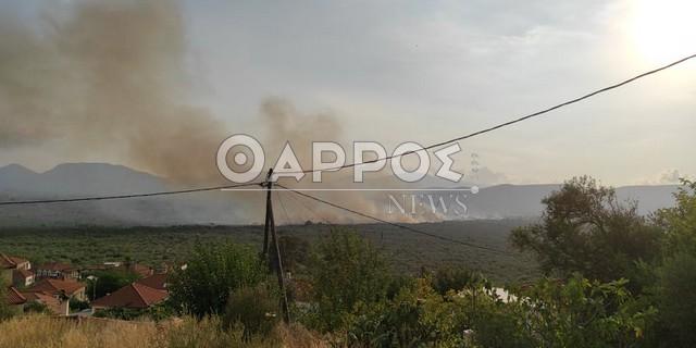 Υπό μερικό έλεγχο η φωτιά στο Διαβολίτσι – Μεγάλες καταστροφές