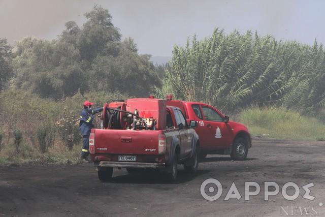 5 πύρινα μέτωπα αντιμετωπίστηκαν την ίδια ώρα  χθες στη Μεσσηνία