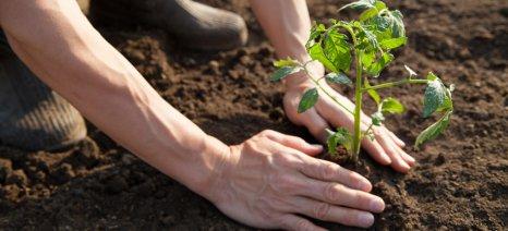 Ημερίδα για βιολογική και βιοδυναμική γεωργία διοργανώσει ο Α/Σ ΝΗΛΕΑΣ