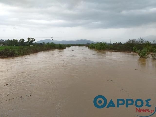 Δημοπράτηση έργου για  τις ζημιές στο Δήμο Οιχαλίας