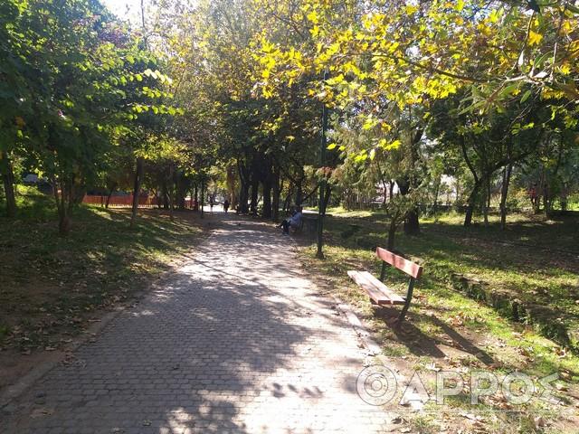 Κάλεσμα για καθαρισμό του Πάρκου του ΟΣΕ