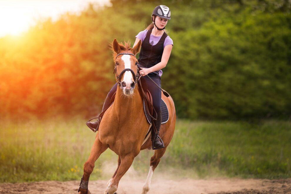 «Σε μια συμμαχία, πάντα ο ένας κάνει το άλογο κι ο άλλος τον καβαλάρη»