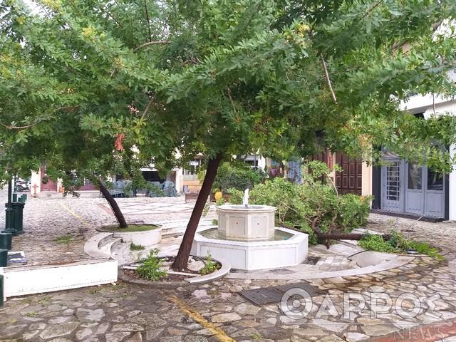 Έπεσε κι άλλο δέντρο στα Παπλωματάδικα