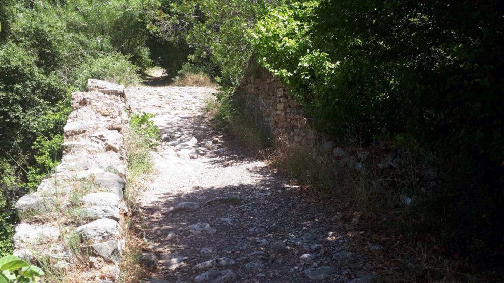 Απαιτούνται σοβαρές παρεμβάσεις  και συνέργεια για το πέτρινο γεφύρι της Νέδας