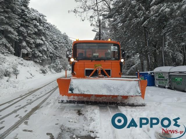 Μήδεια: Η κατάσταση στο οδικό δίκτυο της Περιφέρειας Πελοποννήσου
