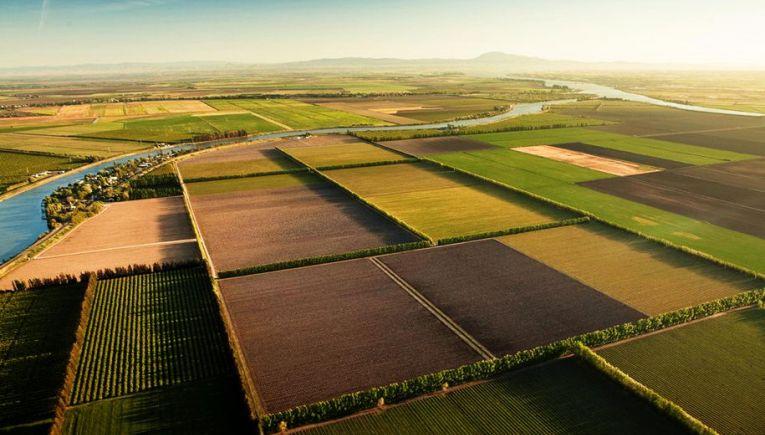 Την επαναφορά του νόμου  Βενιζέλου για τους δασικούς χάρτες ζητούν ιδιοκτήτες αγροτικών ακινήτων