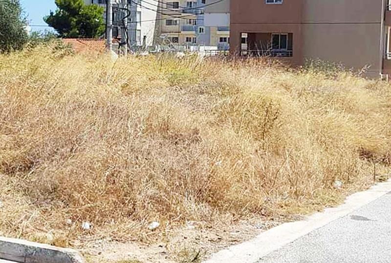 Δήμος Μεσσήνης: Εργασίες καθαρισμού  δημόσιων χώρων και οικοπέδων