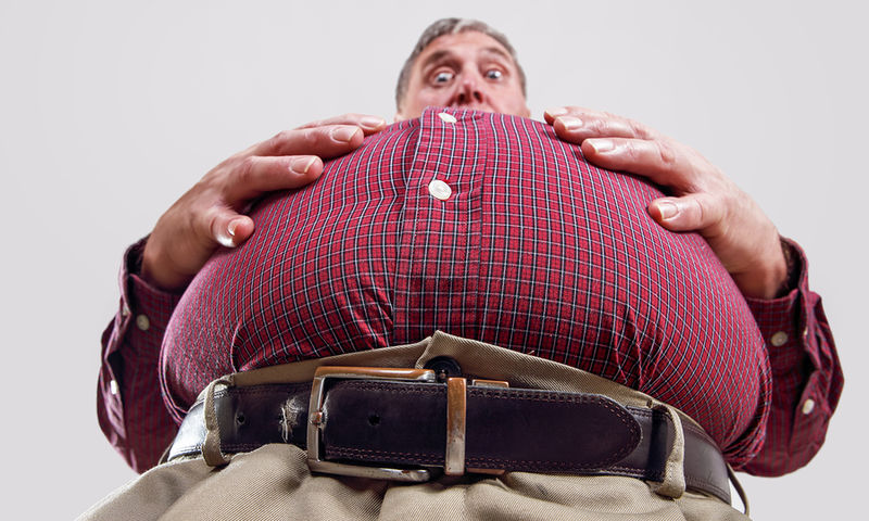 Ιαπωνία: Εταιρεία «νοικιάζει» υπέρβαρους για 15 ευρώ την ώρα