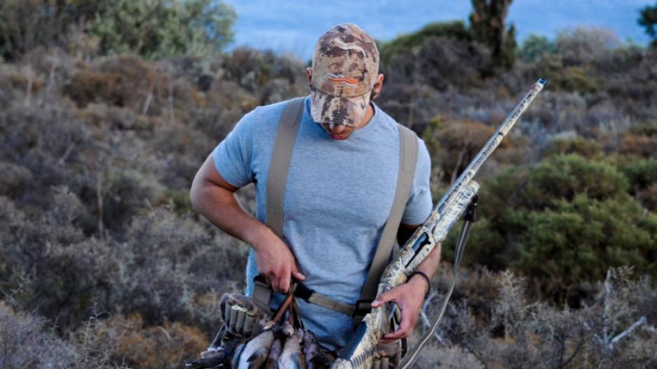 Μέσω κινητού θα δηλώνουν  τα τρυγόνια που θηρεύουν οι κυνηγοί