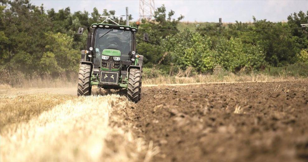 Η ξηρασία που… τελειώνει την ελαιοπαραγωγή, φθείρει τώρα και το φυτικό κεφάλαιο