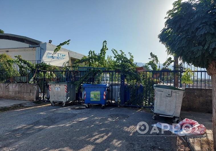 Καλαμάτα: Άνοιξαν τα σχολεία που τελούσαν υπό κατάληψη